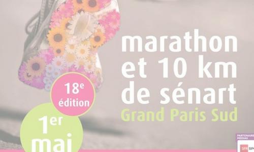 Destination Marathon – The D day